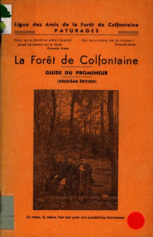 La fôret de Colfontaine